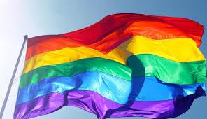 Celebraciones por el día del orgullo gey