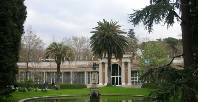 Real jardin botanico madrid
